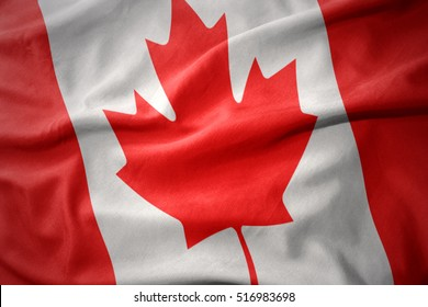 waving colorful national flag of canada.