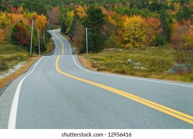 Waving highway surrounded by the fall forest