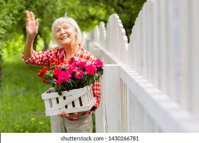 Waving to neighbor. Beaming beautiful elderly lady waving to her neighbor standing near fence