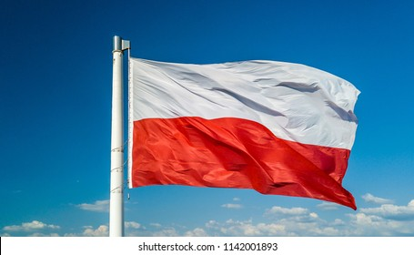 Waving on wind polish national flag