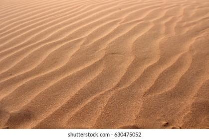 wavy sand in sharjah, uae