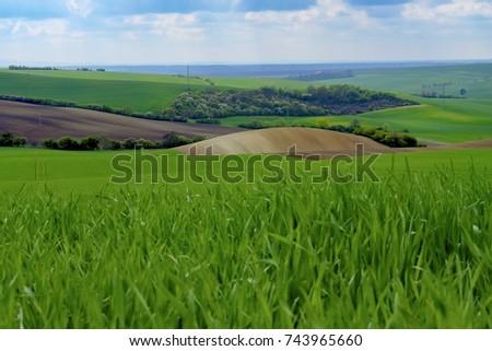 Wavy Spring Fields South Moravia Moravian Stock Photo (Edit Now