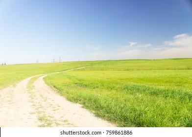 Way Ahead Summer Lawn