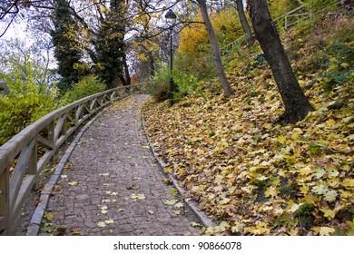 Way in autumn park, Prague