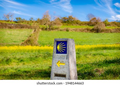Way Marking Stone Post with Scallop Shell Symbol and Yellow Arrow Sign in the Spring Field outside Sarria, Galicia on the Trail of the Way of St James Pilgrimage Trail Camino de Santiago