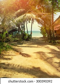Way on sand beach under palm trees at tropical coast of Thailand, vintage toned and film stylized for create atmosphere