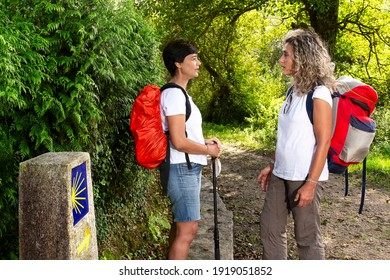 way to Santiago of Compostela , woman couple pilgrims with yellow scallop shell sign  in english route , near Mino village , Coruna , Spain