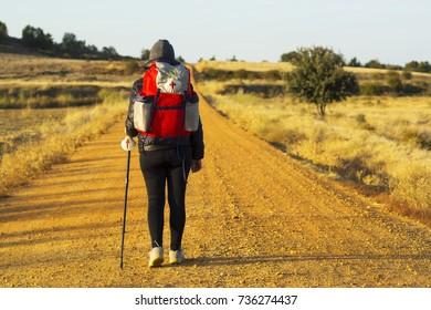 way of St James , pilgrim woman walking  to Compostela , near Astorga  , Leon , Spain