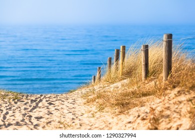 Way toward blue sea through sand dunes leading by stake fence (copy space)