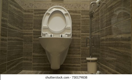 WC in the toilet. Toilet bowl in the toilet. Modern bathroom in luxury house