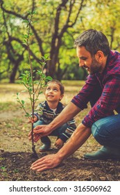 We are doing everything together. Happy young man planting a tree while his little son helping him