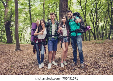We like it! Active weekends together! Four excited friends are gesturing like signs, posing for portrait in the wood in fall, smiling, bonding
