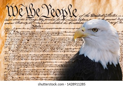 We the people with American bald eagle .