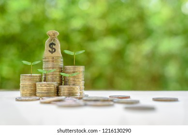 Wealth or asset management and growth investing concept : US dollar money bags, green sprout on coins, depicts investment / strategy focused on growth of an investor's capital, invest in growth stocks
