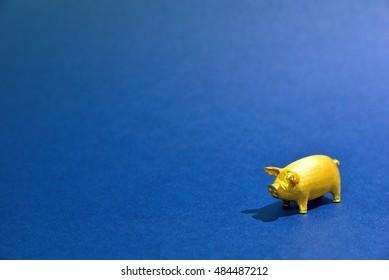 Wealthy pig