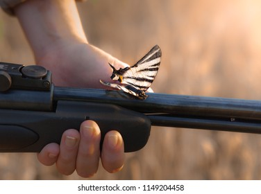 weapons with an optical sight in female hands,on a black barrel a large beautiful bright butterfly sits,the contrast between rudeness and defenselessness,burnt grass in the background,daylight,sunset