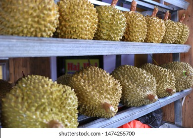 Weasel Durian /Durian Musang, one of the most expensive durians in Southeast Asia, tastes good, a little bitter and very delicious