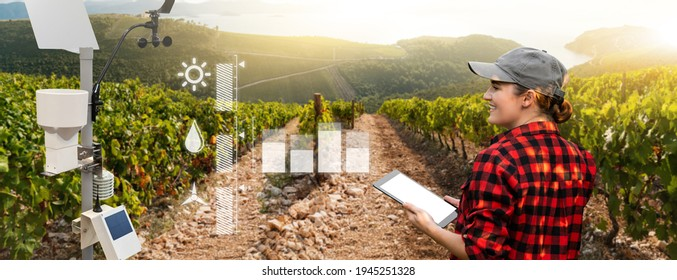 Weather station in a field with vineyard. Woman farmer with tablet at wine farm. - Shutterstock ID 1945251328