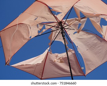 Weather Torn Umbrella