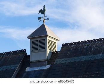 Weathercock Weathervane Pointing West on Top of Tiled Roof with Blue Sky and White Cloud in Background