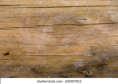 Weathered beach wood texture. Timber background