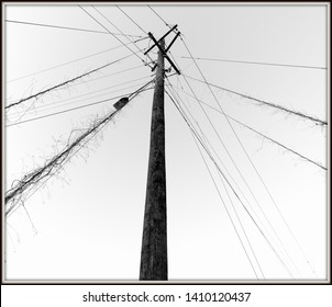 Weathered electric pole in black and white