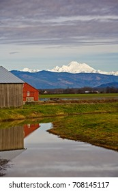 Weathered farm building and red barn reflected in water canal on farm below snow capped Mt Baker, Washington