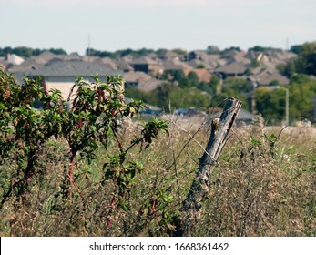 A weathered fence post on the edge of former pastureland and a new housing development in the distance is a stark contrast highlighting suburban encroachment on rural land in Southwest Missouri
