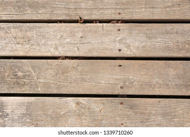 Weathered grey 2x4 lumber in deck. Landscape