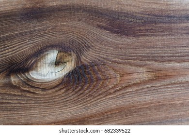 Weathered natural wood board. Aged lumber plank