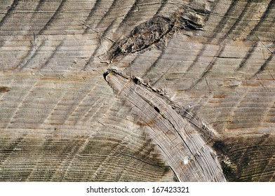 Weathered obsolete rough textured wooden board background