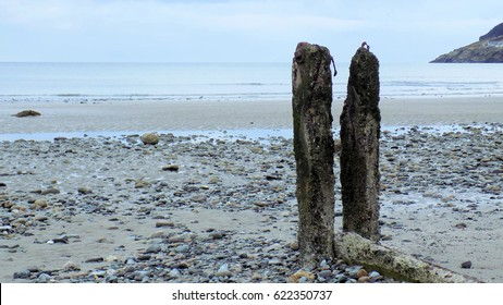 Weathered Posts on Beach