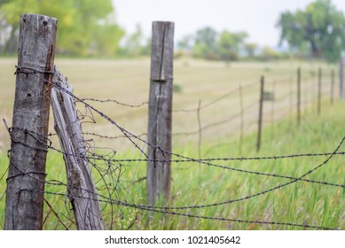 weathered and tangled old barbed wire fence outside rural farm property line