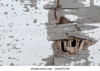 weathered white paint on wooden board