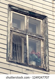 weathered window with flowers