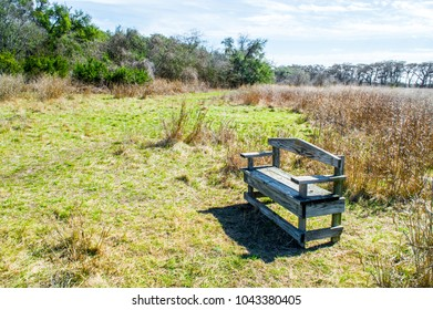 weathered wooden bench amid golden prairie grass and trees in the Texas Hill Country