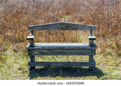 weathered wooden bench amid tall prairie grass in the Texas Hill Country near San Antonio