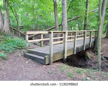 Weathered wooden footbridge, framed by trees on the far side, spanning a ravine in a wooded area in the upper Midwest. Exposed soil, roots, dead leaves with cross fallen trees & foliage background.