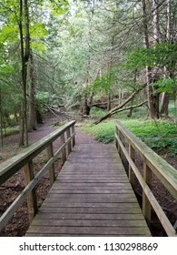 Weathered wooden footbridge spanning a ravine in a wooded area in the upper Midwest. Exposed soil, roots, dead leaves, fallen trees, foliage & a dirt pathway leading into the distance.