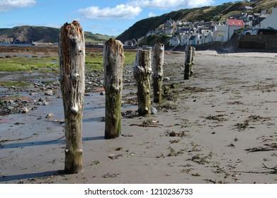 Weathered wooden posts on a beach in the Scottish village of Gardenstown, Aberdeenshire