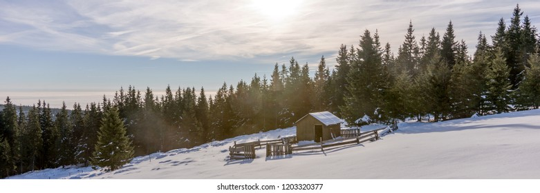 Weathered wooden shepherd hut on the mountain in winter