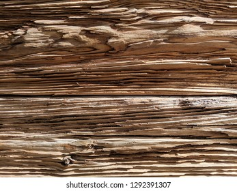 Weathered wooden wall made of split logs with eye sockets, textured natural background