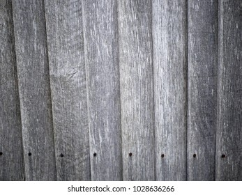 Weathered worn natural unpainted timber fence with closefitting panels and row of nails at the bottom