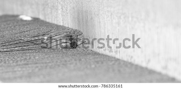 Weaving shuttle on the loom
