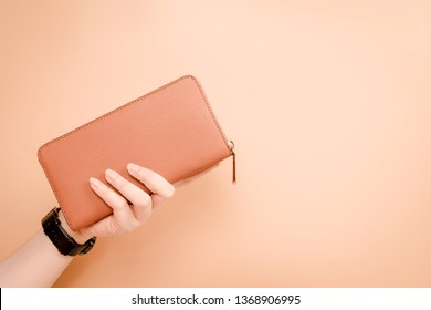 web banner design for woman fashion in spring and summer concept with beauty woman hand hold modern brown leather purse or wallet in left hand with pastel color background