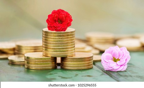 Web banner of gold coins and flowers - money savings in spring