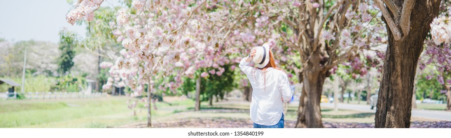 web banner spring season with full bloom pink flower travel concept from backside of beauty asian woman enjoy with see cherry blossom with soft focus flower background