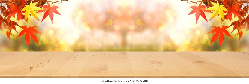 web banner wooden tabletop with fall and autumn season design with red maple background