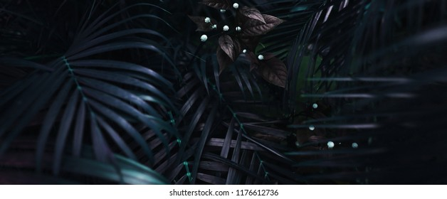 Website banner of tropical palm foliage for background in dark soft colors. Concept of summer and travel agency, jungle theme and blog heading for nature website, flora and plants.