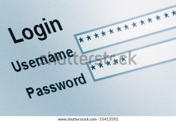 Website Login Screen Macro Capture Pale Blue, computer web safety, password username